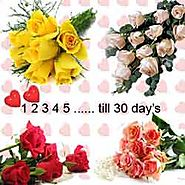 Order Flowers Every Hour and Day Online, Deliver Flowers Online India