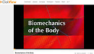 Biomechanics of the Body