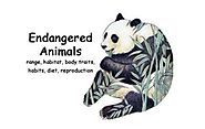 Year 7 English Endangered Animals | Listly List