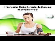 Hypertension Herbal Remedies to Maintain BP Level Naturally