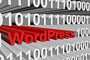 Custom Website using WordPress CMS - User friendly Platform