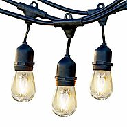 Brightech Ambience Pro LED Commercial Grade Outdoor Light Strand with Hanging Sockets - Dimmable 2 Watt Bulbs - 48 Ft...