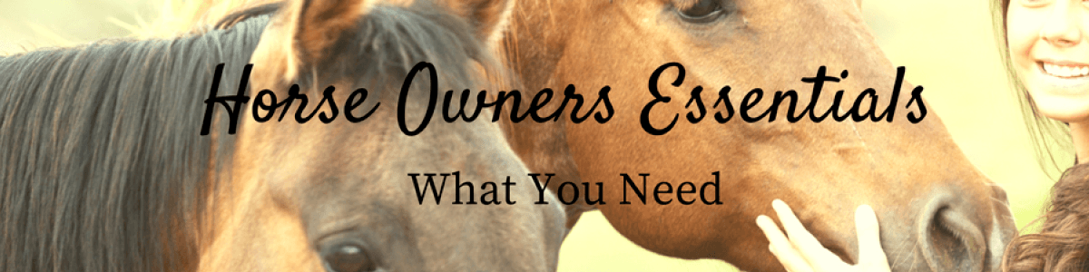 Headline for Horse Owner Essentials
