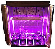 8 Site Hydroponic System Grow Room - Complete Grow Tent