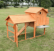 Top 10 Best Chicken Coops 2017 in 2017 - Buyer's guide (November. 2017)
