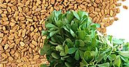 Health Benefits Of Methi Seeds (Fenugreek)