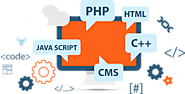 The growing base of web development in India - Digital Marketing Services