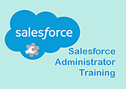 Live Salesforce Certification Training for ADM 201 & DEV 401 - MindMajix