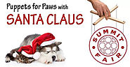 Puppets for Paws with Santa Claus at Summit Fair - 12/7/17