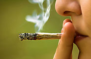 Study finds marijuana use is associated with dating violence