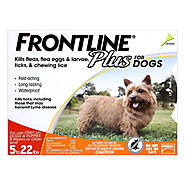Buy Frontline Plus Flea & Tick Treatment for Dog Supplies - PetCareClub.com