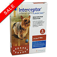 Interceptor for Dogs: Interceptor Heartworm Medicine for Dogs