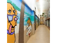 Capitol Canine Club Pet Hotel in Virginia
