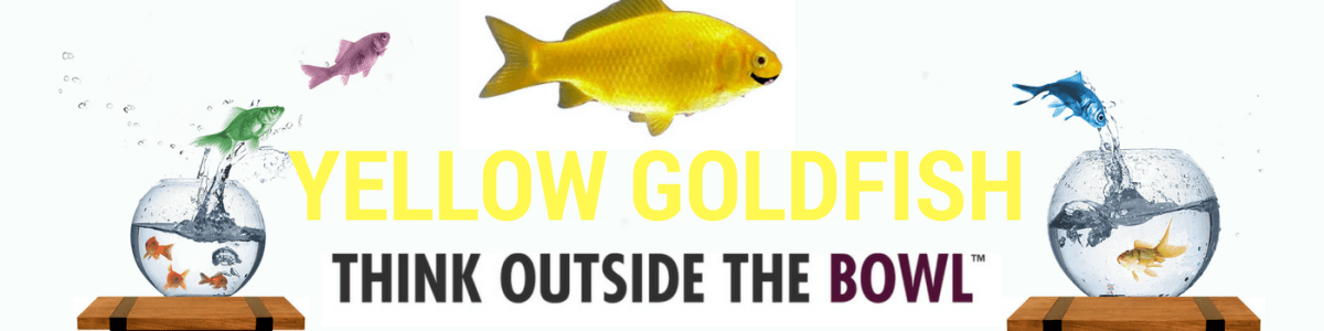 Headline for Yellow Goldfish Project