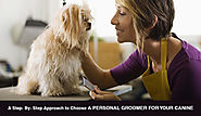 A Step- By- Step Approach to Choose A Personal Groomer For Your Canine – BudgetPetWorld