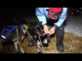 Toughest Race on Earth Iditarod 01 The Last Great Race