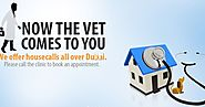 How to choose the best veterinary clinic for your pet??