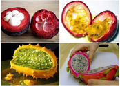 The top 10 exotic fruits