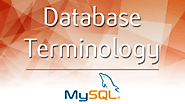 Database Terminology - A Beginners Guide - 365 Data Science