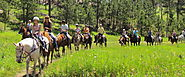 Spend Your Vacation with Horseback Riding in Black Hills