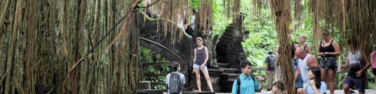 Headline for 05 Places to See when in Ubud – Brush Up on Your Culture