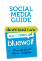 @Bluewolf | Going Social
