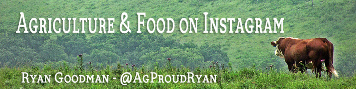 Headline for Food and Agriculture on Instagram