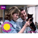 British Comedy TV Shows on Amazon on Bag the Web