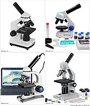 Top 10 Best Educational Microscopes for Beginners Reviews on Flipboard