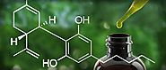 Cannabidiol - What is CBD and Medical Uses - BellFeed