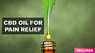 CBD Oil for Pain Relief - BellFeed