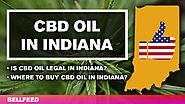 CBD Oil in Indiana: Is It Legal? Where to Buy? [UPDATED 2018]