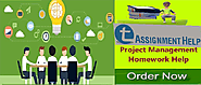 Take the help of professional writers for project management assignments