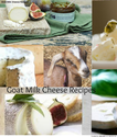 Goats Milk Cheese Recipes