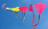Best Kites For Kids Reviews and Ratings