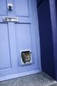 how to make a pet door