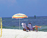 Gulf Shores Vacation Guide - Alabama Vacation Guide Gulf Shores AL