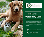 Best Veterinary Care for Your Pet