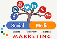 Digital Marketing Agency Gurgaon & Social Media Company Delhi Design & Develop Brand Management Consultancy for Start...