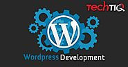 Is WordPress Good For Website development ?