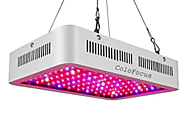Best 1000 Watt Led Grow Lights