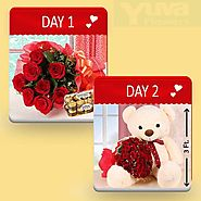 Buy/Send Teddy brings Love - YuvaFlowers