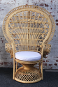 From Egypt to the American Patio: A History of Wicker Furniture