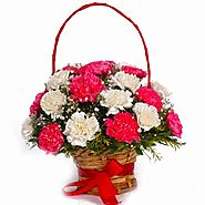 Buy/Send Basket of Pink and White Carnations - YuvaFlowers