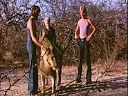 Christian the Lion - 2nd and Final Reunion!