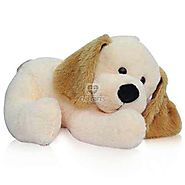 Order Cute Sleeping Dog Online Same Day Delivery - OyeGifts.com