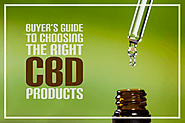 Primary Guidance To Choosing Right CBD Products