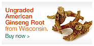 Cure Various Ailments with Wild American Ginseng