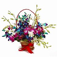 Send Colorful Fifteen Orchids Arrangement Same Day Delivery - OyeGifts