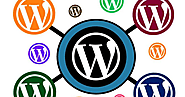 5 Reasons Why Everyone Wishes to Hire The Best WordPress Developer
